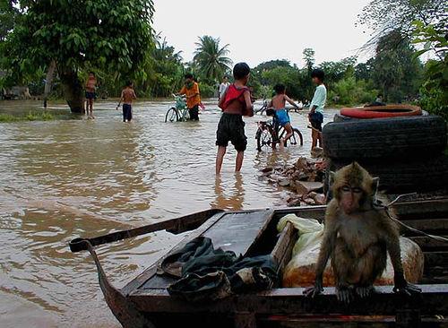 1219381132_SqcaT2FV_floodchildren