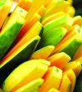 1p mango