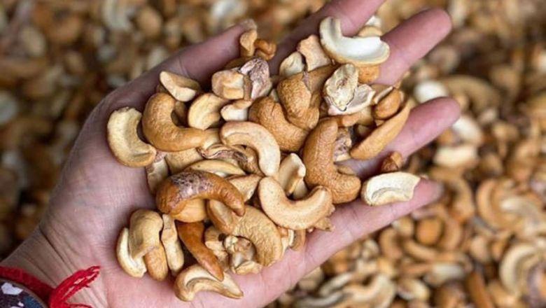 캐슈넛과 캄폿후추가 알리바바 판매용 캄보디아 농산품으로 선정됐다